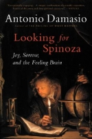 Looking for Spinoza
